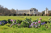 Chenonceau chateaux — Stock Photo