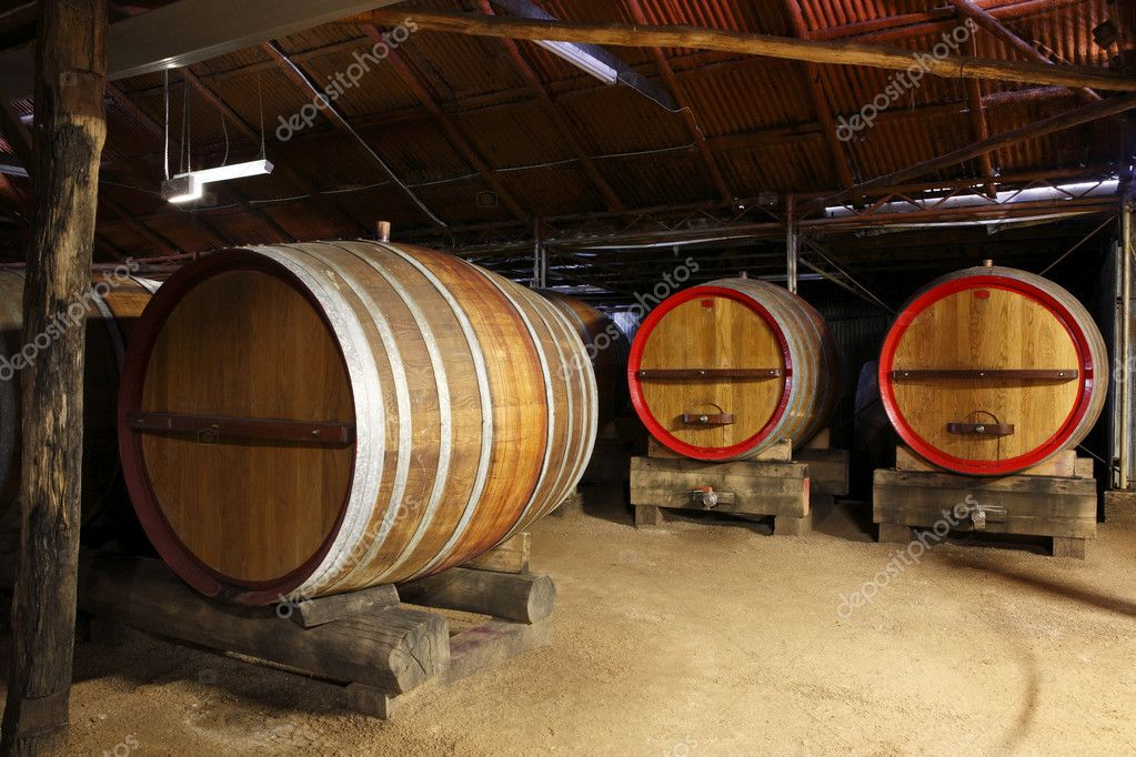 Oak Wine Barrels in a Winery cellar — Stock Photo #9059850