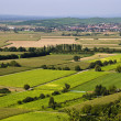 Agricultural landscape, fileds — Stock Photo