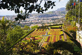 Botanic garden, Funchal — Stock Photo