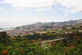 Funchal, Maderia island, Portugal — Stock Photo
