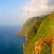 Coast and cliffs of Madeira island, Portugal — Stok fotoğraf