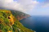 Coast and cliffs of Madeira island, Portugal — Стоковое фото