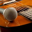 Guitar and a microphone — Stock Photo #8968372