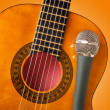 Guitar and a microphone — Stock Photo #9063226