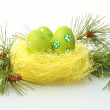 Colorful Easter eggs — Stock Photo #9676505