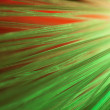 Green optical fibers - Stock Photo