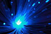 Blue optical fibers — Stock Photo