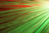 Green optical fibers — Stock Photo