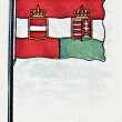 Austrian and Hungarian Empire Flag — Stock Photo
