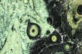 Zelený jaspis — Stock fotografie