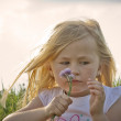 Sad Little girl on meadow, before sunset — Stock Photo #9426008