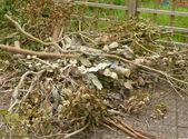 Garden rubbish — Stock Photo