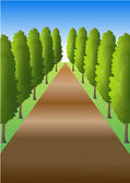Path with trees — Stock Photo