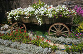 Bed with flowers issued old rural style — Stock Photo