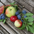Stock Photo: Apples cherries pears on bench