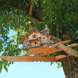 Exclusive starling house on tree crone — Stock Photo #10631996