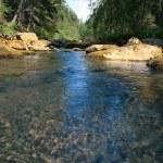 Wood river — Stock Photo #9809477
