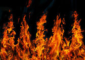 Red fires on black background — Stock Photo