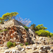 Old walls of Spinalonga. — Stock Photo #9472482