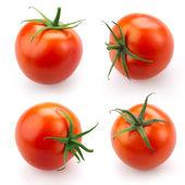 Tomaten-satz isoliert auf weiss — Stockfoto