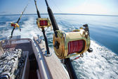 Big game fishing — Stockfoto