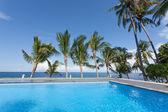 Basen i palmy — Zdjęcie stockowe