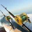 Big game fishing — Stock Photo #9119951