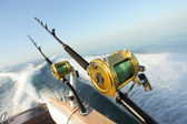 Big game fishing — Foto de Stock