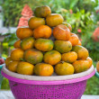 Clementine display — Stock Photo