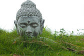 Buddha statue head — Stock Photo