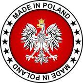 Made in Poland — Stock Vector