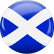 Scotland flag icon - Stock Vector