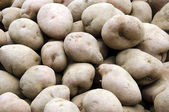 Spuds on the market — Stock Photo