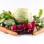 Spring salat — Stock Photo #10196209