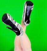 Elegance legs — Stock Photo