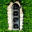 Hiden window — Stock Photo