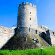 Old castle — Stock Photo #10679336