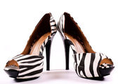 Zebra heels — Stock Photo