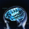 Stock Photo: Blue crystal brain with head and code