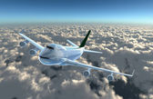 Airplane fly to cam — Stock Photo