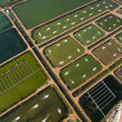 Aerial view of a fish farm — Stock Photo #9117489