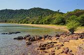Golden beach at Rabbit Island — Stock Photo