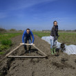 Young man and woman hard working in Latvian farm — Stock Photo
