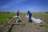 Agriculture workers in Latvian countryside — Stock Photo