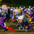 Vienna Vikings vs. Graz Giants - Stock Photo