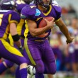 Vienna Vikings vs. Bergamo Lions - Stockfoto