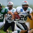 Stock Photo: Danube Dragons vs. Tirol Raiders