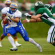 Danube Dragons vs.  Graz Giants - Stockfoto