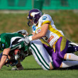 Dragons vs. Vikings - Stockfoto